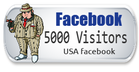 5,000 USA Facebook Visitors